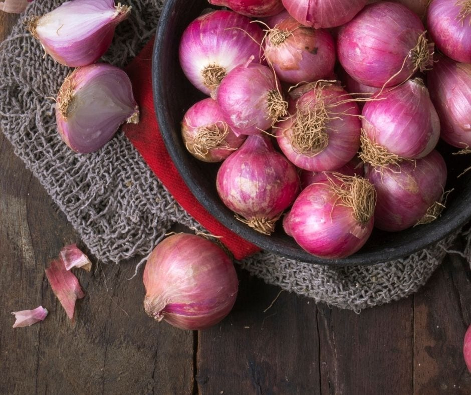 city wide produce onion supplies
